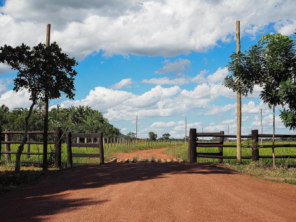 Schnorcheln in Brasilien
