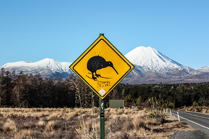 3-Tongariro-National-Park