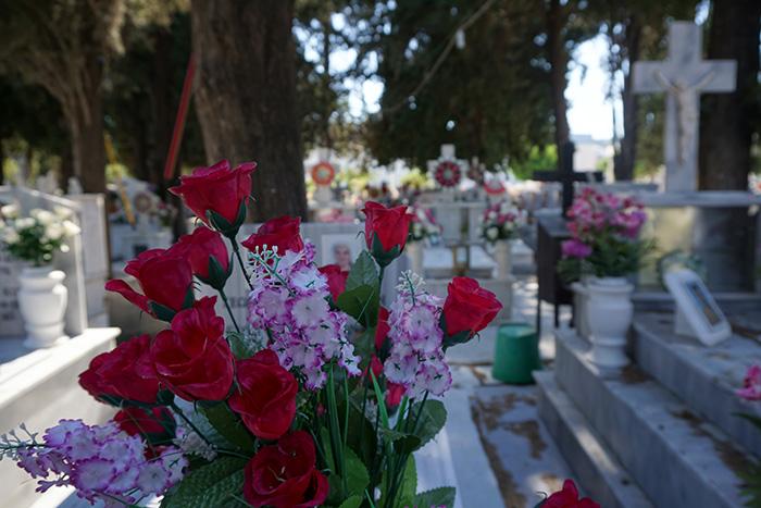 Afantou-Friedhof-Plastikblume