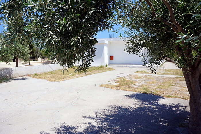 Afantou-Olivenbaum-und-Haus-Kopie