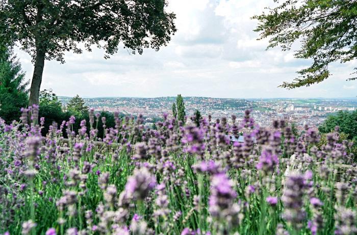Aussicht-Stuttgart