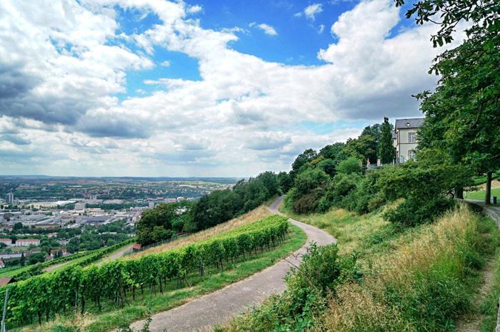 Heilbronn-Weinberge