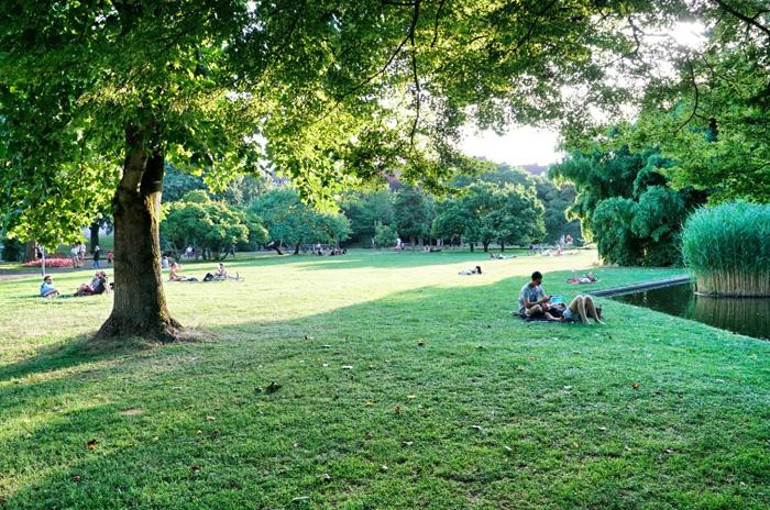 Stadtpark-Freiburg