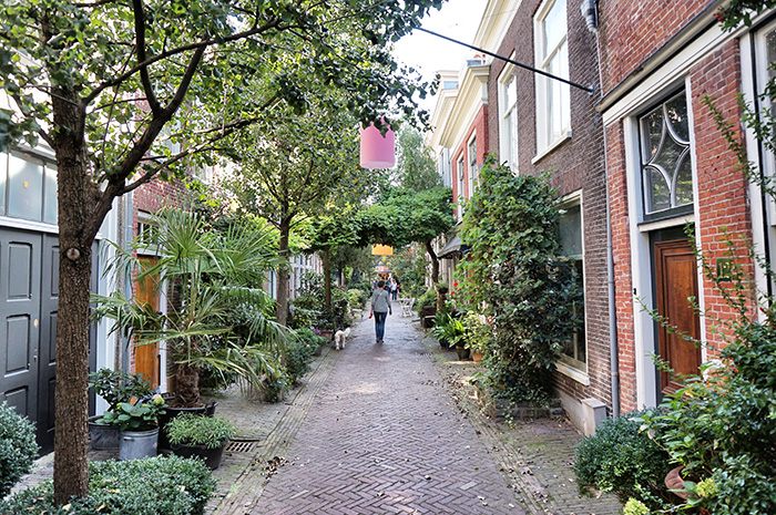 haarlem niederlande tipps