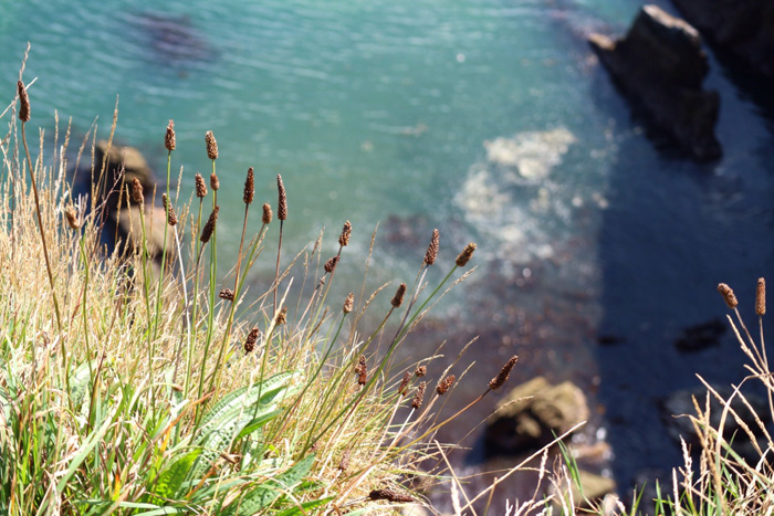 Old-Head-Küstenabschnitt