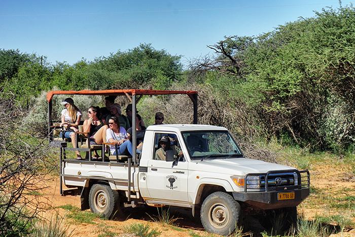 safari-1-im-gelaendewagen