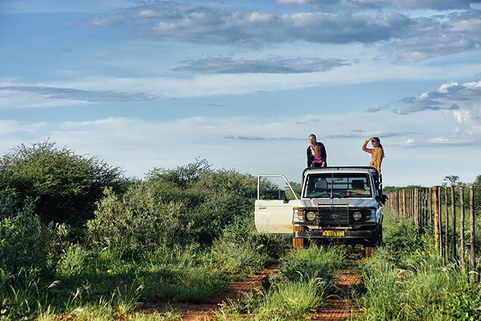 safari-2-erst-mal-mussten-wir-die-pferde-suchen