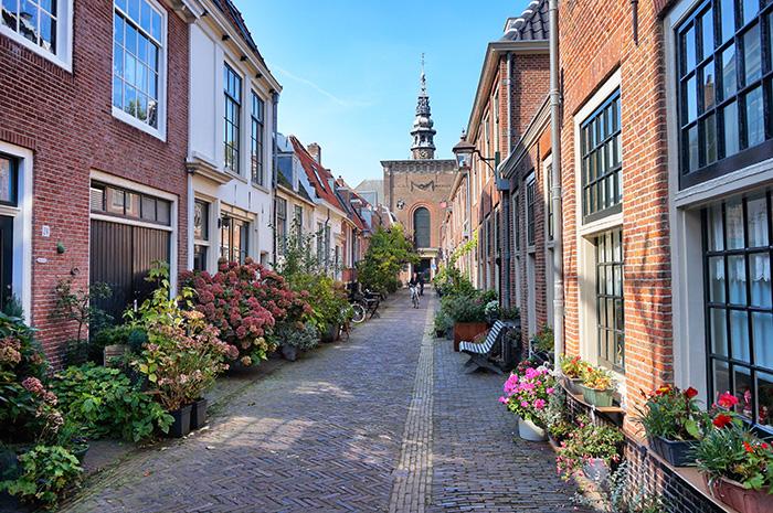 Tagesausflug Haarlem - Straße