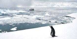 antarktis-anladnung
