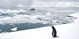 Antarktis Abenteuer – das ewige Eis und seine Bewohner