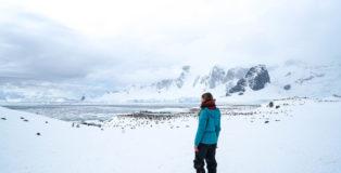 antarktis-christine-neder