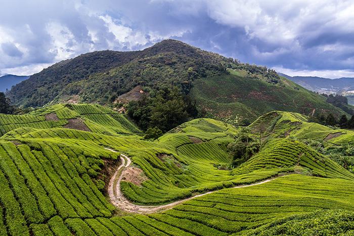 malaysia-pixabay-moritzklassen