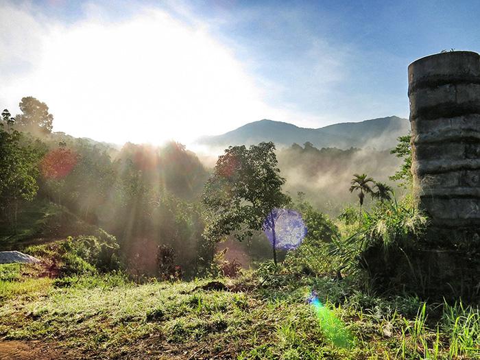 malaysia-urlaub-taman-negara