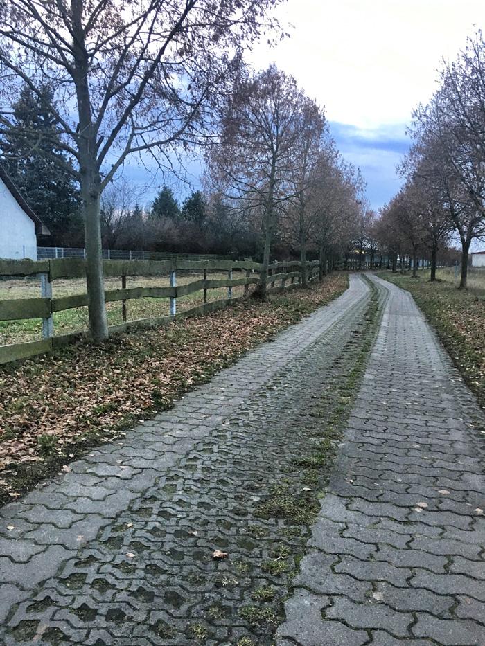zaun-tierheim