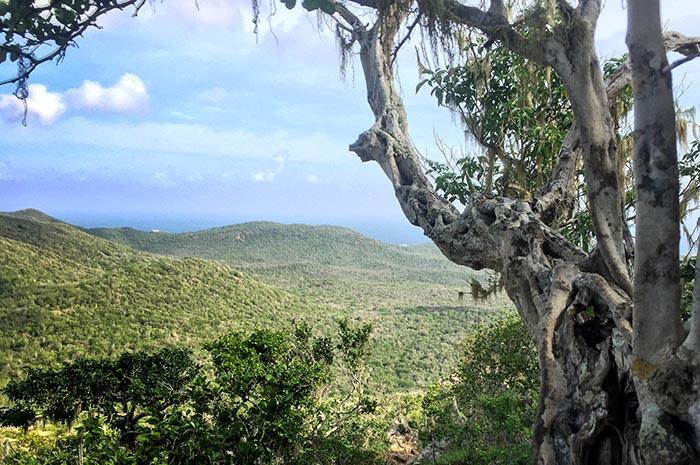 Curaçao-Aktiv-Urlaub-Christoffelberg