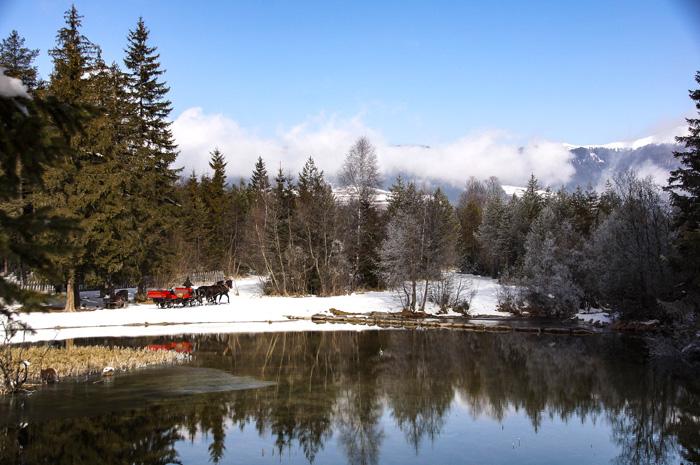 Dolomitenregion Drei Zinnen_Pferdeschlittenfahrt Toblacher See