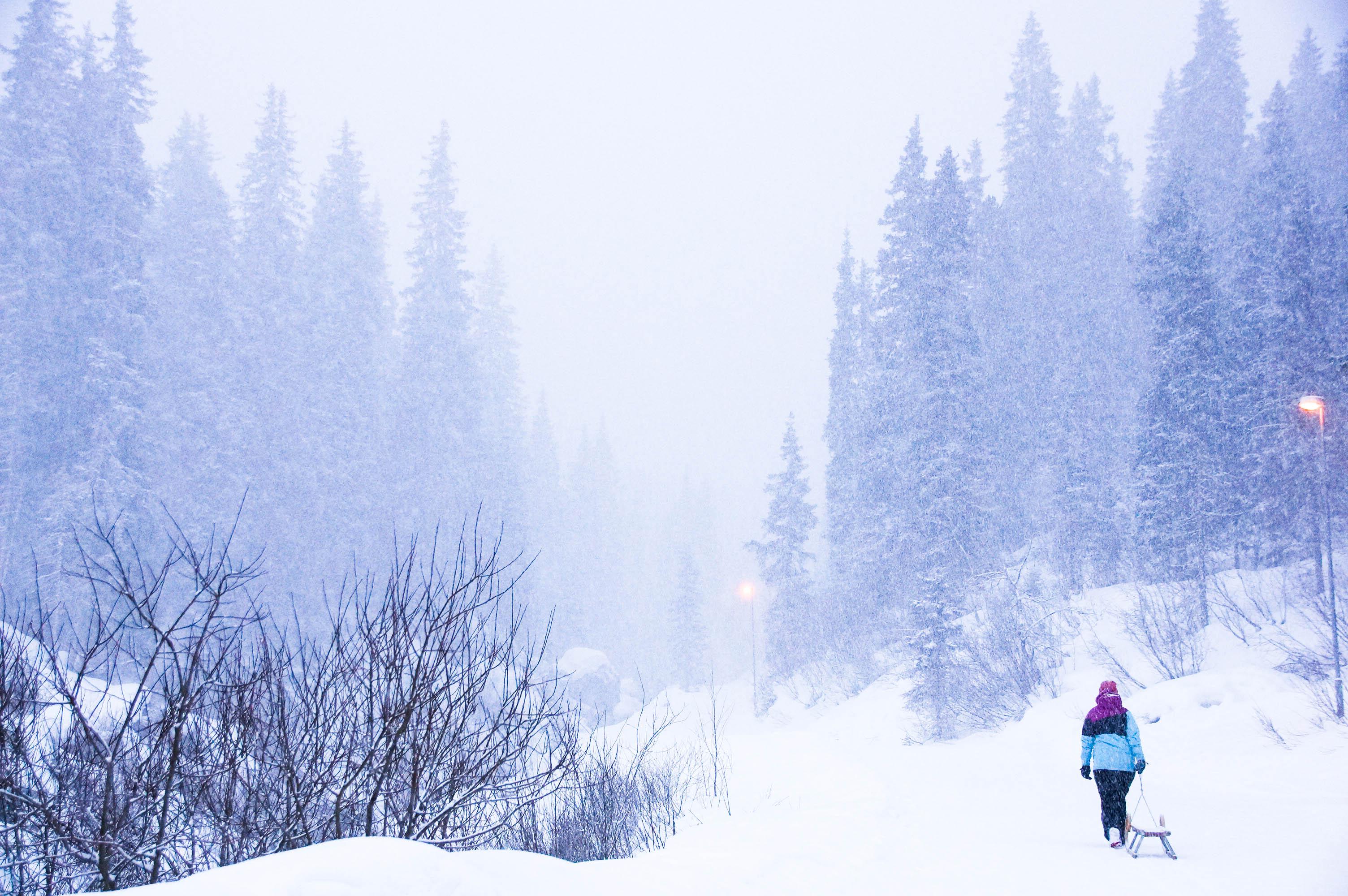 skigebiet-hochfuegen_rodeln