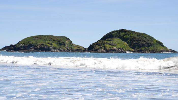 Chiloe Reisetipps-Islotes de Punihuil