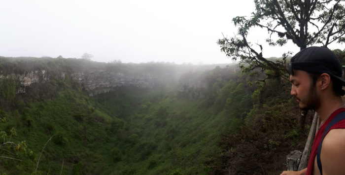 Galapagosinseln günstig bereisen-Wälder