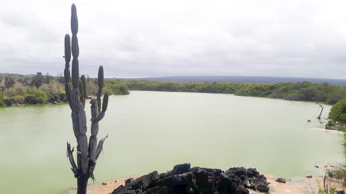 Galapagosinseln günstig bereisen-Landschaft