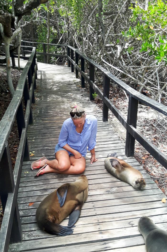 Galapagosinseln günstig bereisen-