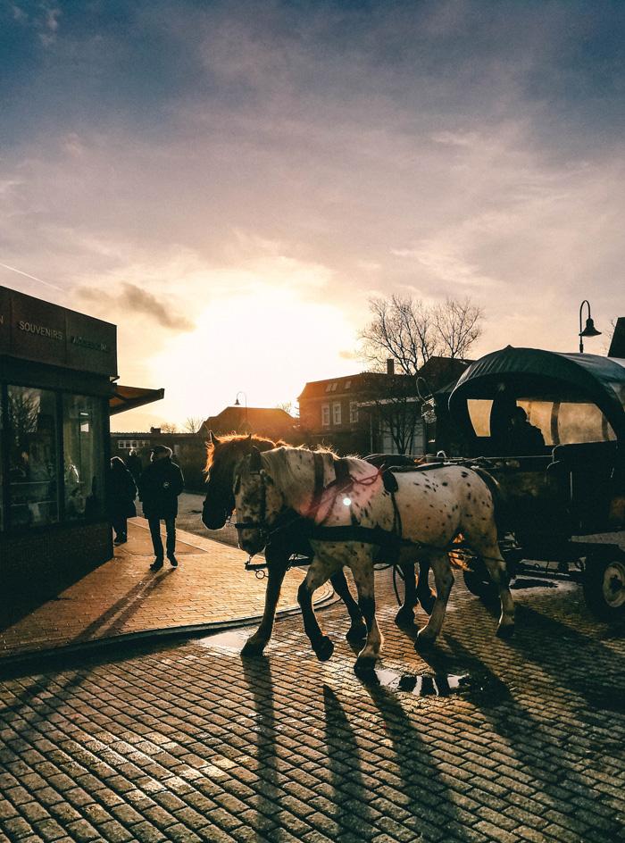 Pferdekutschen-Juist