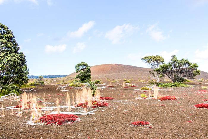 Hawaii Inselhopping Reisebericht-big island