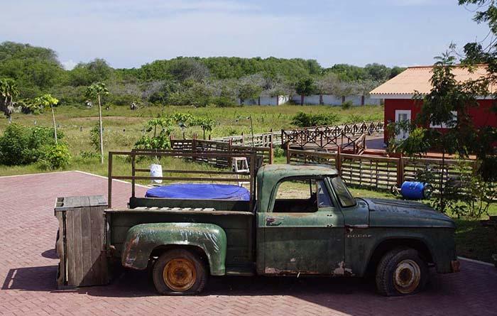 Truck auf dem Hof des Hofi Cas Cora auf Curacao