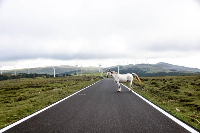 Roadtrip Nordspanien