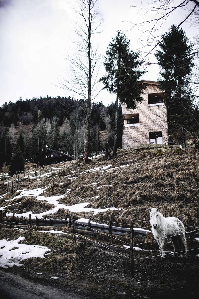 Turmzimmer Tannerhof