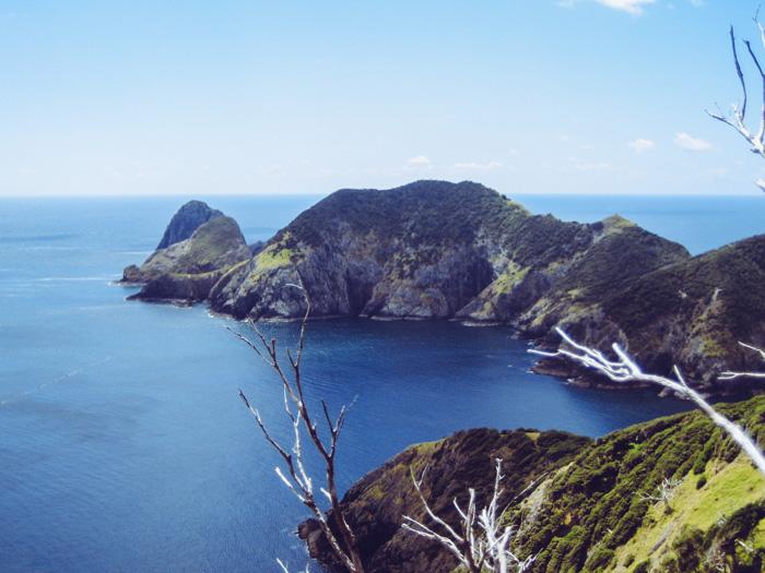 Segeln durch die Bay of Islands