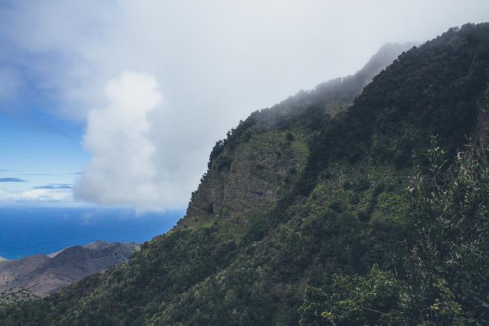 Die Landschaft von La Gomera erinnert stark an den Film Avatar.