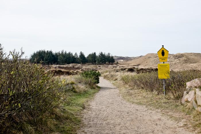 Wanderwege Amrum