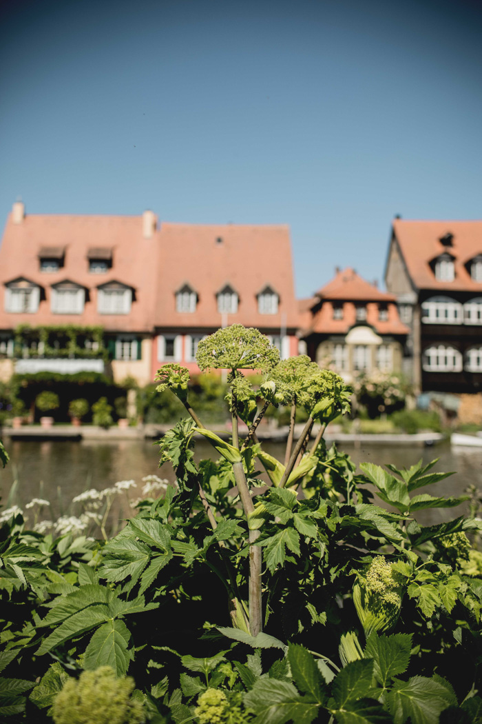 Fischerei Bamberg