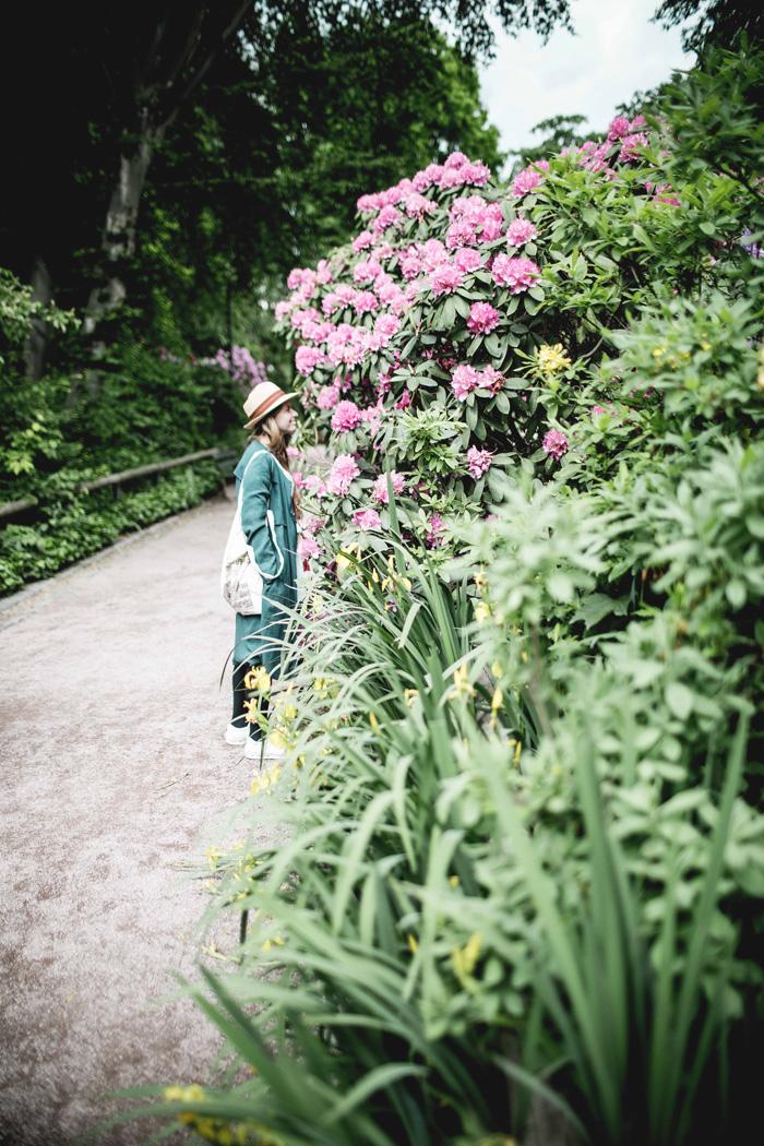 Blumen Park Schönlein