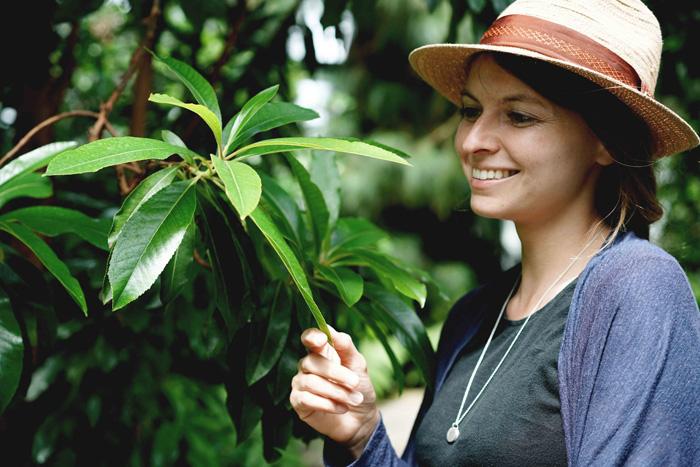Tropen Botanischer Garten