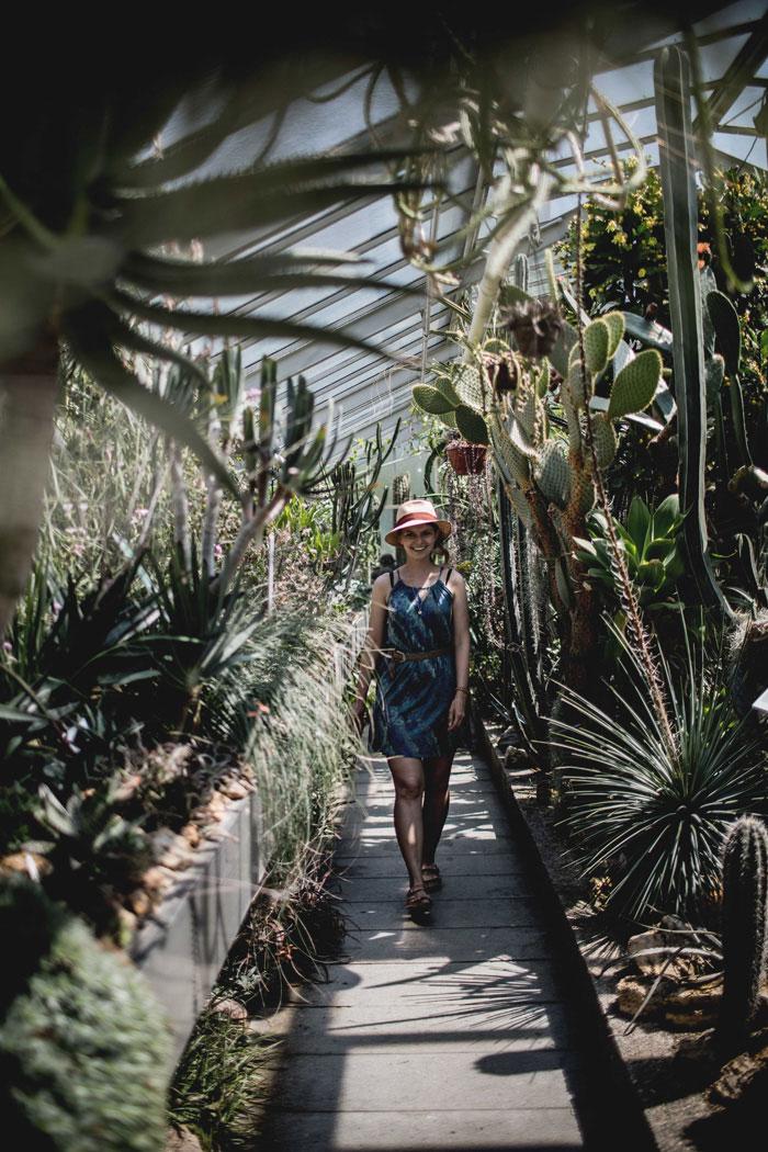 Botanischer Garten Erlangen Christine NEder