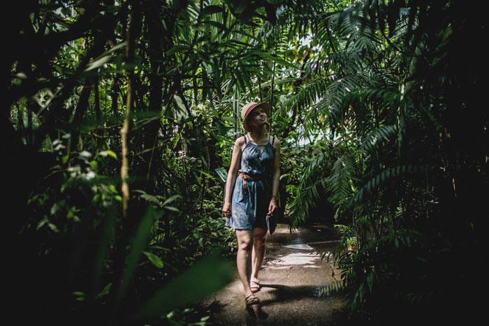 Botanischer Garten Tropenhaus