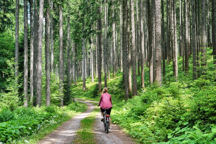 E-Bike Hochschwarzwald