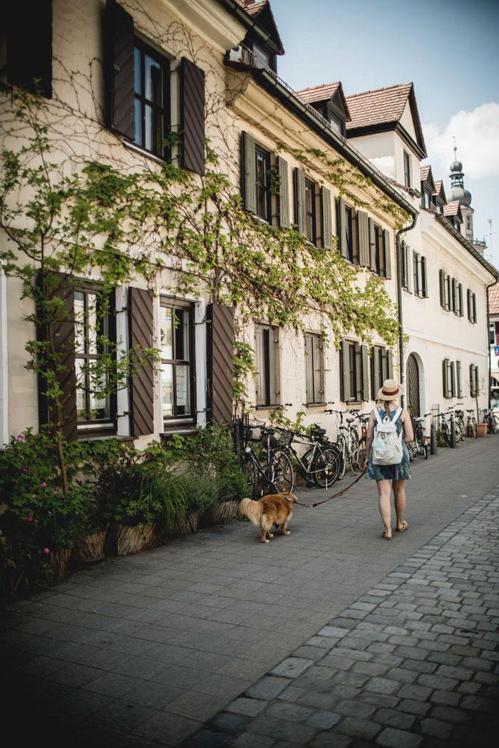 Erlangen mit Hund