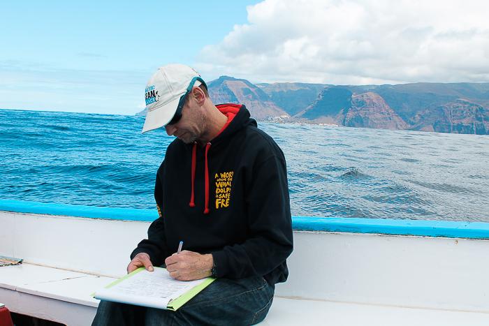 Sichtungsdaten Delfine und Wale vor La Gomera