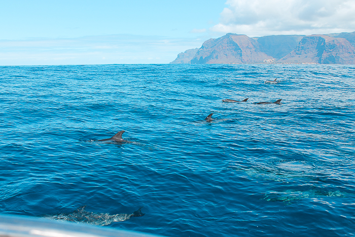 Oceano La Gomera