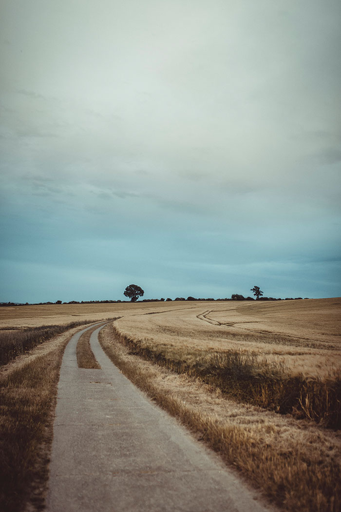 Landschaft in Hohwacht
