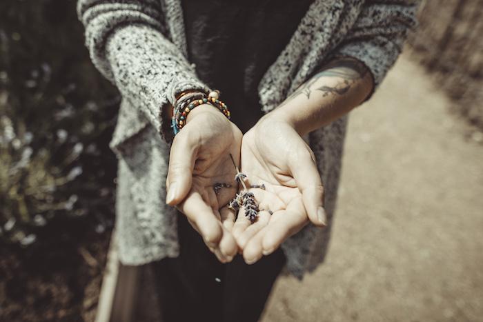 Lavendel in meinen Händen