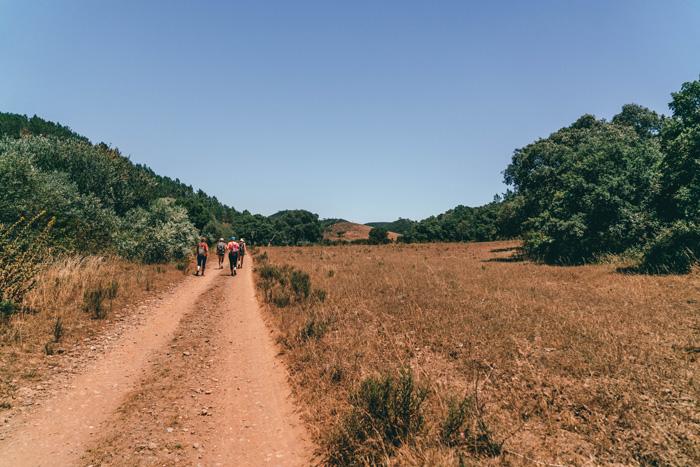 Olimar-Portugal-Experte