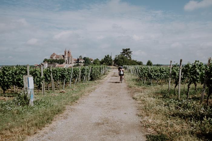 E-Bike Tour Breisach