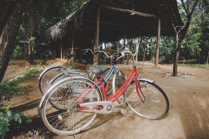 Radfahren Sri Lanka