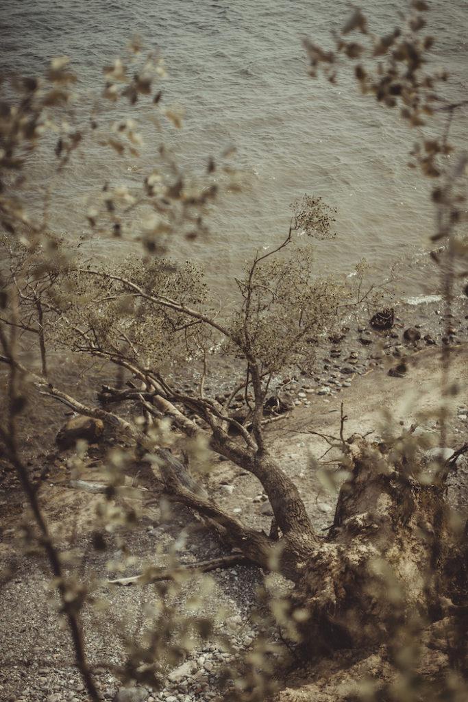 Steilküste Felsenstücke Osteeurlaub