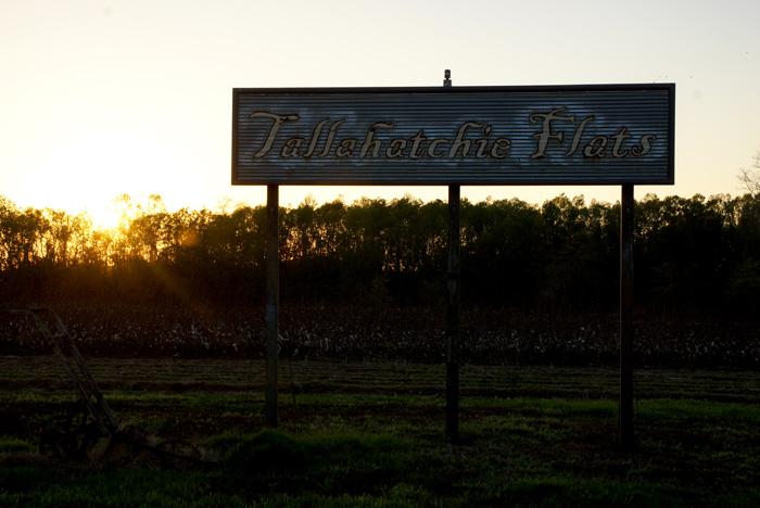 außergewöhnliche Unterkunft auf einem Roadtrip durch Mississippi: Tallahatchie Flats