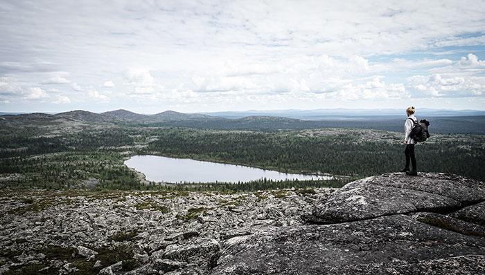 Pyha Nattanen Tara